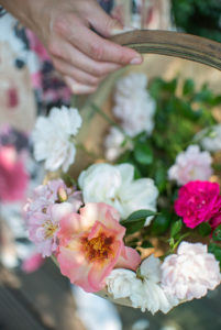 Enjoy the long flowering period of roses all season long
